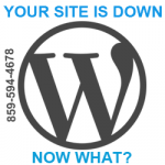 Your WordPress site is down, now what?